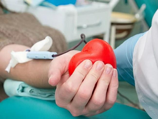 donor.jpg (75.98 Kb)