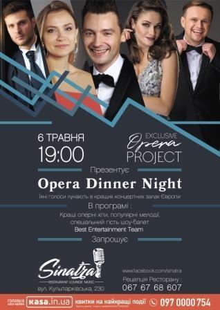 opera-dinner-night.jpg (47.92 Kb)